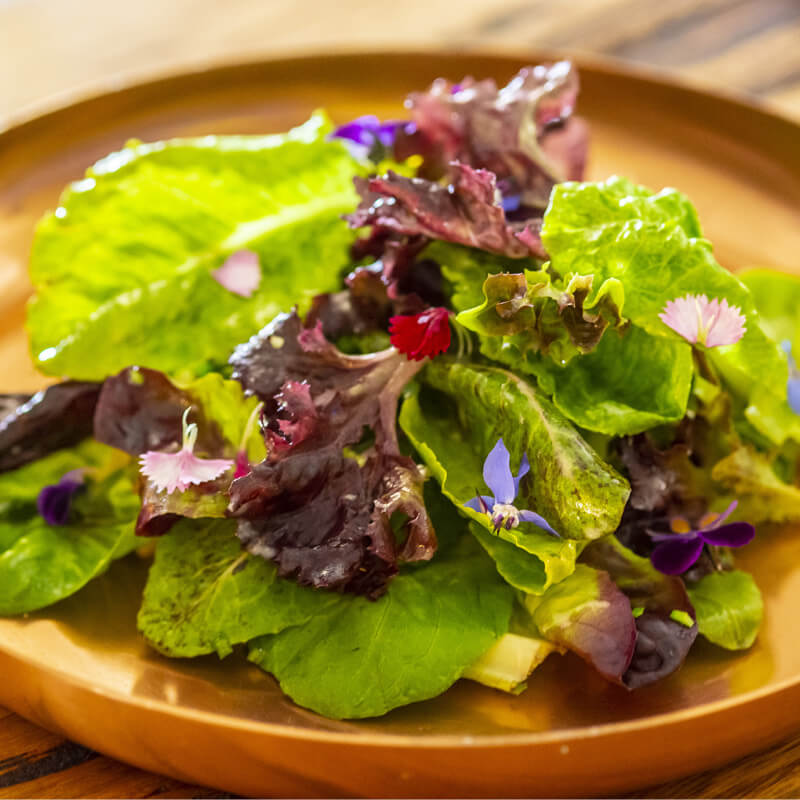 Garden Leaf Salad